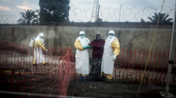 Több mint ötszázan haltak meg eddig a kongói ebolajárványban