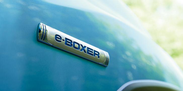 eboxer