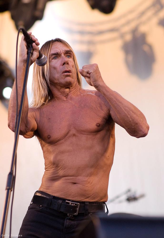 Bár a teletetovált testet gyakran a lázadó rockerekhez kötik, a korábban mutatott zenészek cáfolják ezt a sztereotípiát, ahogy Iggy Pop is