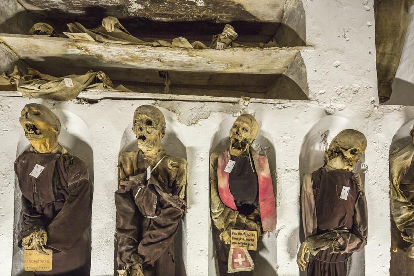 A palermói kapucinus katakomba lakói a legrémisztőbb horrorfilmeket idézik. A pincerendszerben elhelyezett testeken ugyanis egy különleges balzsamozó technikának köszönhetően nem úgy fog az idő vasfoga, ahogy azt várnánk: tökéletesen mumifikálódtak. Rosalia Lombardo a temető leghíresebb lakója: megrázó látni a békésen szendergő kislányt, aki valójában 1920 óta halott.