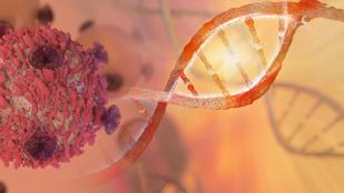 Egyesével elemezhetők a rákos sejtek egy új eljárással
