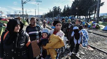 Az oltásellenesség a migráció miatt lesz egyre veszélyesebb