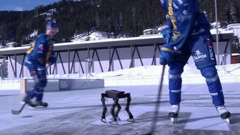 Megtanult jégkorcsolyázni egy robot