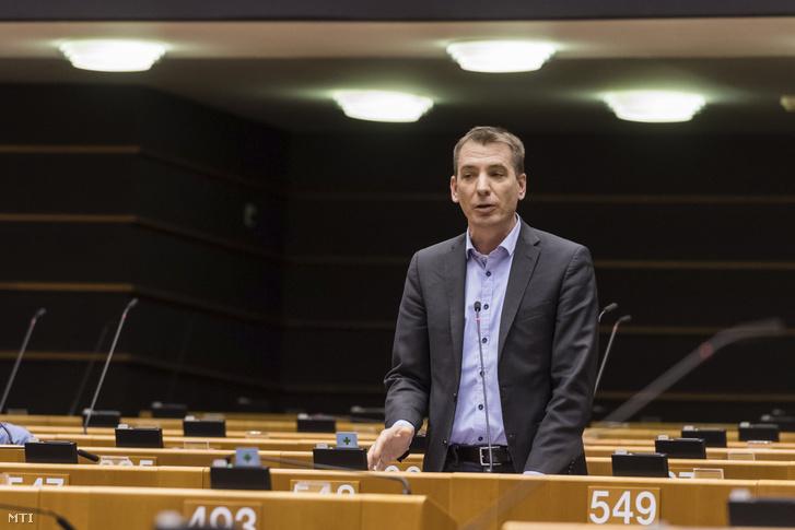 Benedek Jávor, Hungarian MEP
