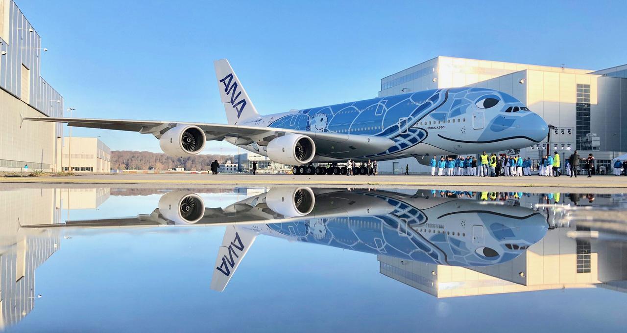 Az All Nippon Airways meglehetősen bonyolult, hawaii teknőst ábrázoló, 3600 négyzetméternyi felületet befedő festése 21 napig készült. Az ANA három A380-ast rendelt, mindhármat a speciális, kék, zöld és narancs verziójú festéssel. A kéket 2018. december 13-án fejezték be, ekkor még talán nem is tudták, hogy az utolsó A380-as szériák egyike került ki kezük alól.