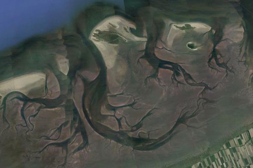 A Watt-tenger Dániánál, a Föld legnagyobb összefüggő árapálysíkságának része.