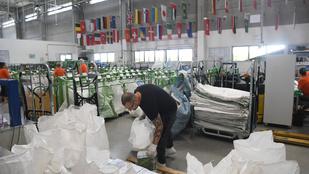 Több száz embert küldenek el a Magyar Postától