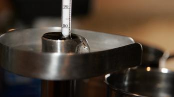 Házi pálinkafőzés: furcsák a NAV-nak lejelentett adatok