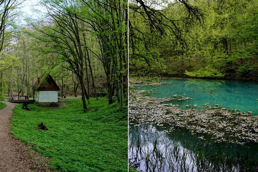 Az ország északkeleti szegletében, a Jósva, a Kecső- és a Tohonya-patak összefolyásánál fekvő Jósvafő természeti kincse a Tengerszem-tó mesebeli látványt nyújt.