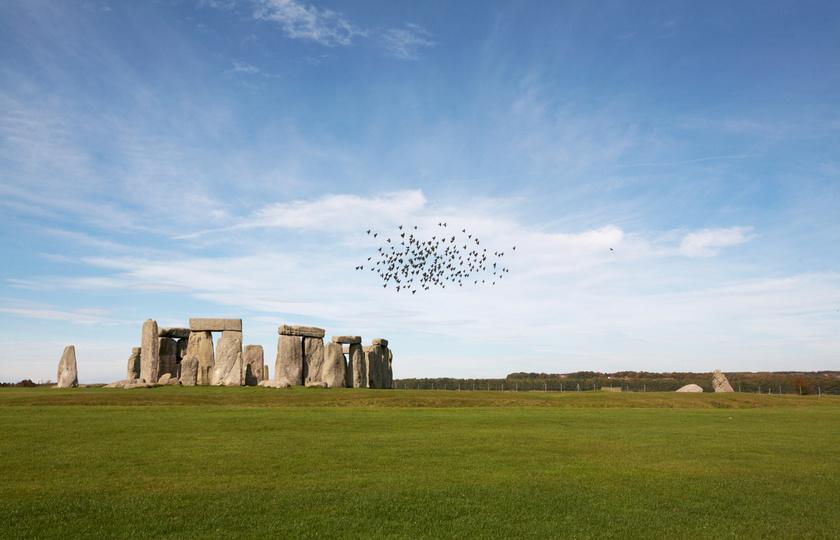 stonehenge-madarak