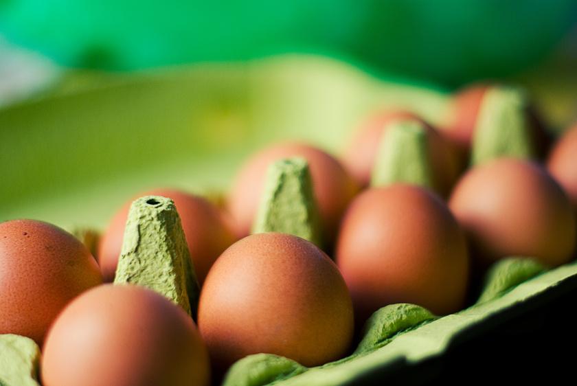 A tojást sokan nem merik felhasználni a szavatossági idő lejárta után, pedig hűtőben tárolva két-három hétig még biztonsággal fogyasztható. Tiramisuba már ne tedd, helyette főzd keményre, vagy süsd süteménybe! Azt, ha a tojás már megzápult, megismerheted a szagáról vagy vízbe téve is, aminek feljön a tetejére.