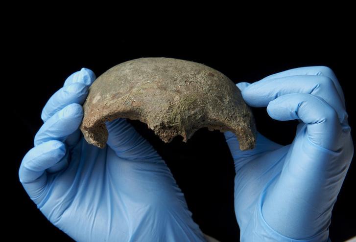 A talált koponyadarab