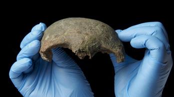 5600 éves koponyát ásott ki egy amatőr a Temze iszapjából