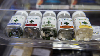 Az orvosi marihuána győzte meg Amerikát a legalizációról