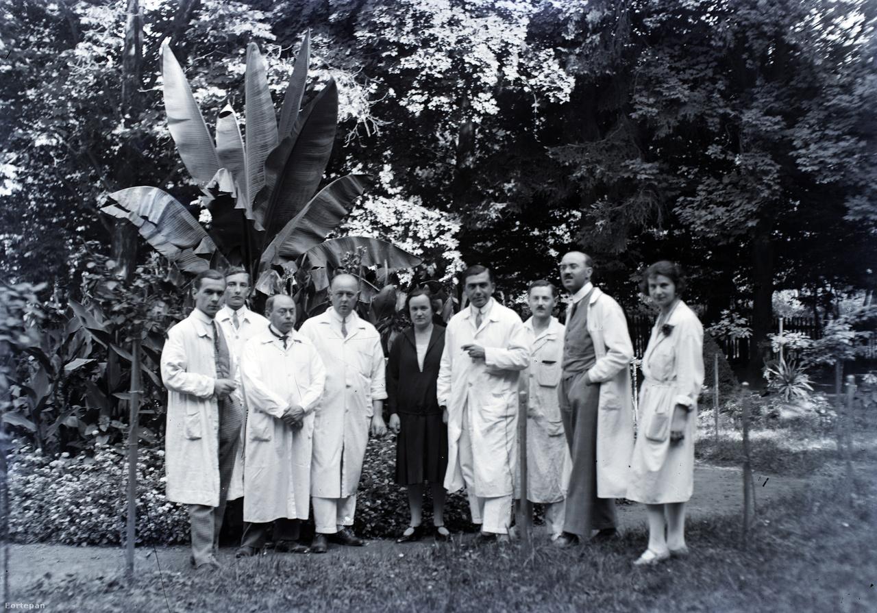 A zalaegerszegi kórház orvosi kara. Balról a harmadik dr. Klein Ferenc elmeorvos, mellette dr. Jancsó Benedek, a kórház főorvosa, jobbról a hölgy mellett zsebre dugott kézzel áll dr. Schlemmer József, 1928 körül.