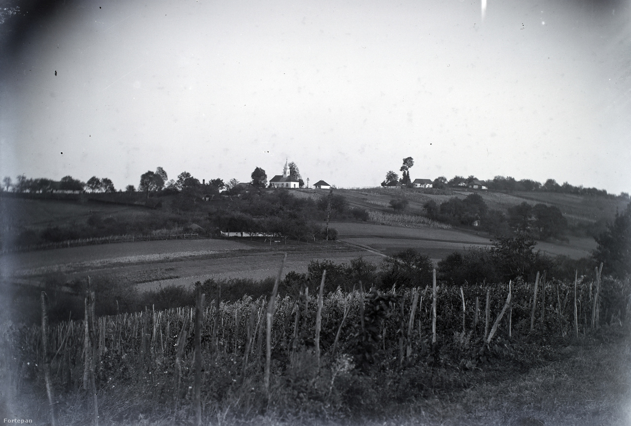 """Zalai dombok szőlőültetvénnyel, távolban az egerszeghegyi kápolna és temetője, Ebergény felől fotózva.Morandini Tamás 1906 körül saját tervei szerint alpesi stílusú nyaralót épített Egerszeg-hegyen, mert már akkor is úgy volt, hogy itt mindenkinek hegye van, nem ám telke. Amikor Morandini 1910-ben a lendvai esernyőgyár építése után csaknem tönkrement, a kétszobás nyaralót és városi bérházait el kellett adnia – csak a Jákum utcai házat sikerült megtartania. Ezután az egerszegi Fuchs és Grósz építésziroda alkalmazottja lett. 1921-ben halt meg, Zalaegerszeg jeles polgáraként. Csaknem harminc éves pályafutása alatt Morandini Tamás kivitelezője volt például a csendőrlaktanyának (ma lakóház), a zsinagógának (ma Városi Hangverseny- és Kiállítóterem), az evangélikus templomnak, a polgári leányiskolának (ma Ady Endre Általános Iskola, Gimnázium és Alapfokú Művészeti Iskola), több városképet máig is meghatározó lakó- és üzletházat tervezett a késő eklektika stílusában.                          Halálakor így írt a Zalamegyei Ujság:  """"családja épen a szombat esti vonattal érkező Tormay Cecilia fogadására megjelent küldöttségben vett részt, mialatt Morandini Tamás műszaki irodájában, baráti körben szórakozott, s ott hirtelen rosszullét fogta el és pillanatok alatt meghalt. A lesújtó hírt családja a vasútállomáson tudta meg. […] Morandini Tamás egyike volt Zalaegerszeg legnépszerűbb polgárainak, […] s egyben messze vidéken – idegen vármegyékben is – keresett építész, elismert szaktekintély. Közéleti működését igazi magyar érzése irányította."""""""