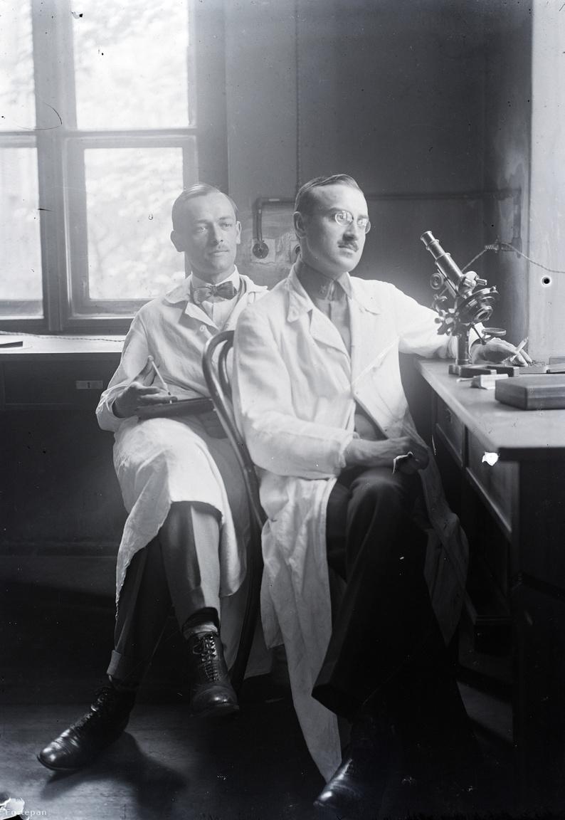 A zalaegerszegi születésű dr. Schlemmer József (elöl) az orvosi egyetem elvégzését követően a budapesti Szentkirály utcai II. számú belklinikán dolgozott, a felvétel róla és kollégájáról készült 1920 körül.                         Schlemmer József lett Morandini Tamás veje, Mária nevű lányának férje. 1927 és 1968 között a zalaegerszegi kórházban dolgozott röntgen főorvosként. Fiúk, a szintén röntgen orvos és lelkes fényképész, a 2018-ban elhunyt Tamás adományozta a családi hagyatékot a múzeumnak.