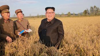 Észak-Korea élelemért könyörög
