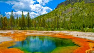 147 éve alapították Maci Laci otthonát, a Yellowstone Nemzeti Parkot