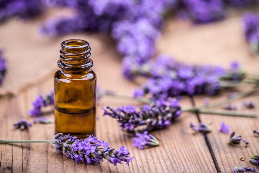 A levendula stresszoldó, nyugtató hatását már régóta használják az aromaterápiában.
