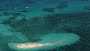 Egymillió tonna iszapot engedne egy ausztrál cég a Nagy-korallzátonyba