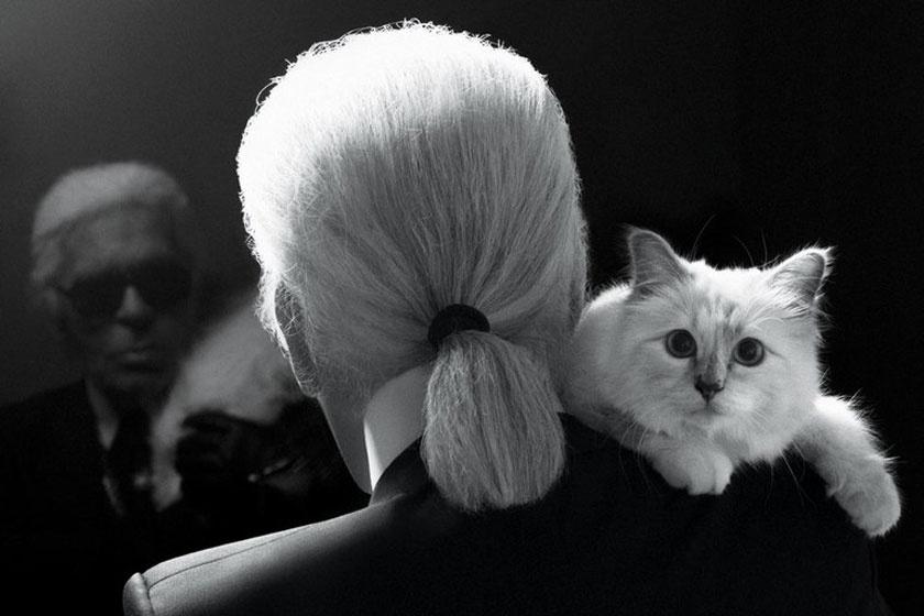Karl Lagerfeld, a géniusz - Meghalt egy ikon