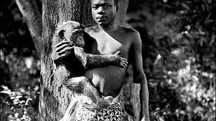 Száz éve még embereket mutogattak az állatkertekben rácsok mögé zárva