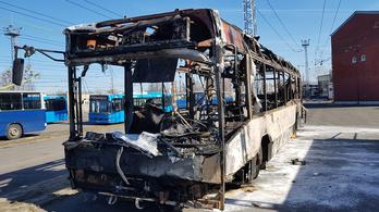 Porrá égett egy éjszakai busz a Normafán