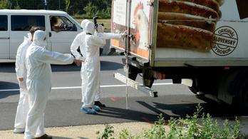 Jogerősen elítélték a halálkamion embercsempészeivel együtt dolgozó bolgár férfit