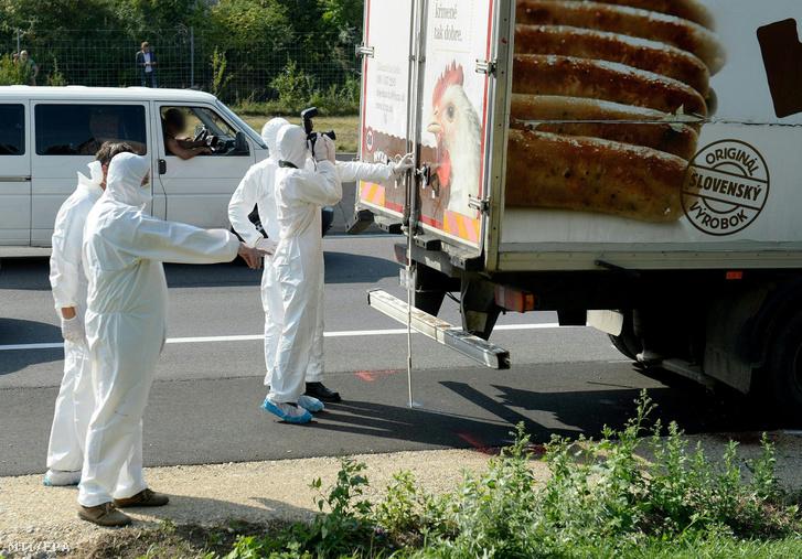 Védőruhába öltözött helyszínelők vizsgálnak egy teherautót az A4-es autópályán Pandorf közelében 2015. augusztus 27-én. A járműben menekültek holttestére bukkantak.