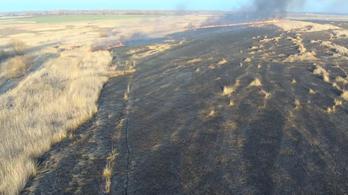 200 hektár természetvédelmi terület pusztult el a tűzben Farmoson