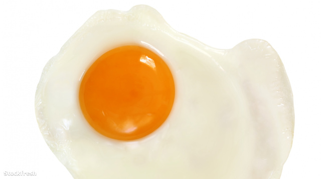 stockfresh 260718 fried-egg-with-path sizeM