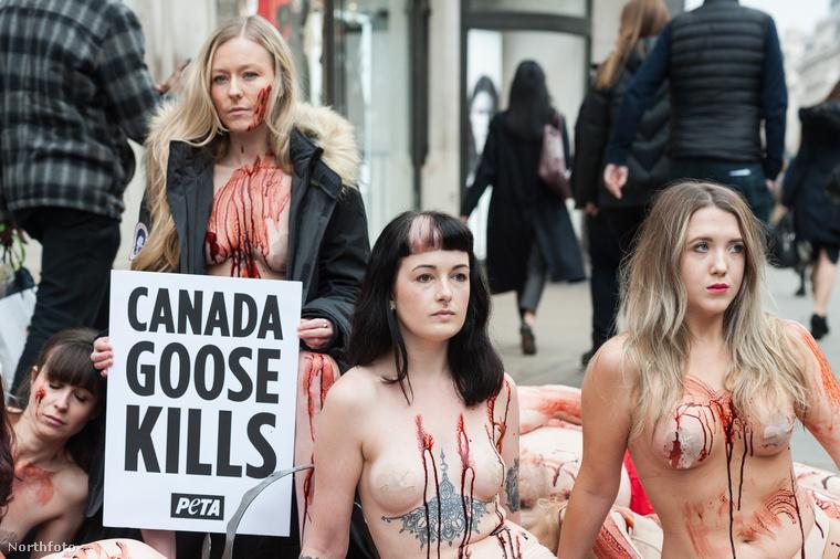 Ez volt néhány PETA-s akciója, hogy felhívják a figyelmet a Canada Goose nevű divatmárka ellen.