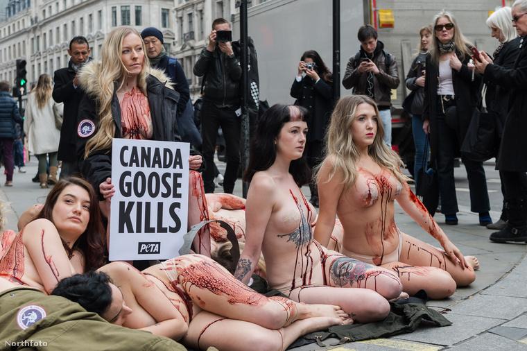 Így, illetve szinte teljesen meztelenül, plusz művérrel bekenve magukat demonstráltak a londoni üzlet előtt.