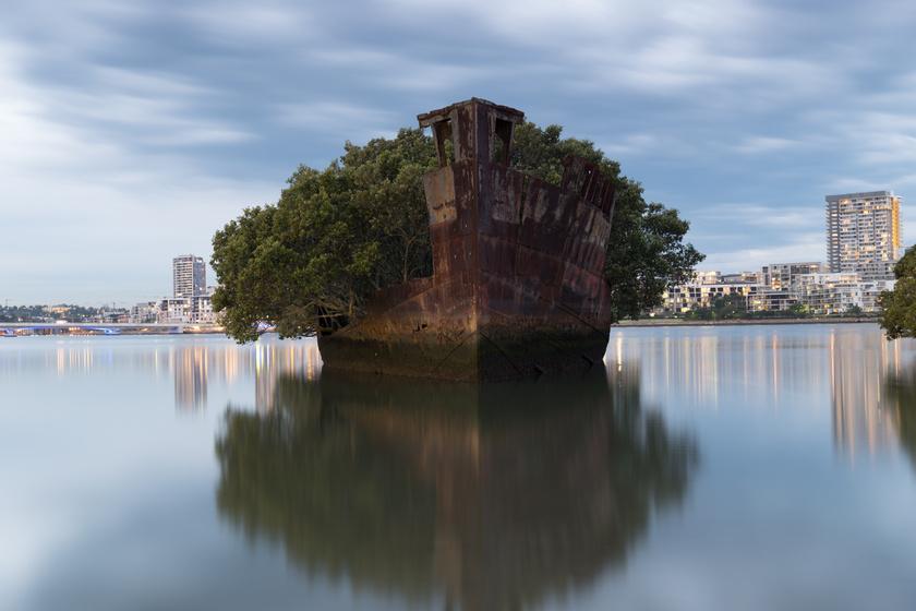 Egykor szénszállító volt, azonban, miután használaton kívül helyezték, Ausztrália partjai mentén az SS Ayrfield úszó erdőnek ad helyet. A Homebush-öböl látványossága földöntúli érzetet kelt.