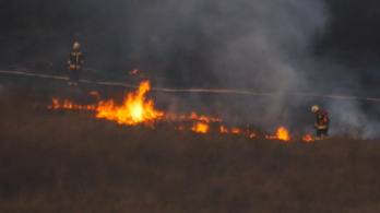 Lángolt a száraz gaz a Hármashatár-hegy aljában