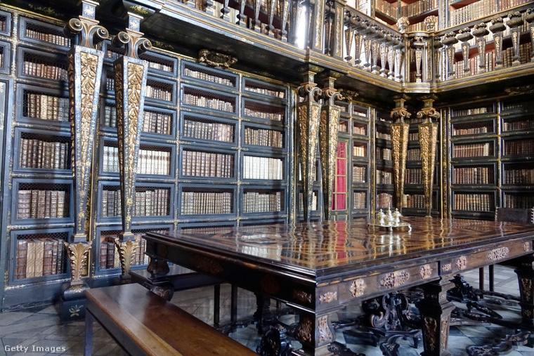 Biblioteca Joanina PortugáliábanA Coimbrában található Biblioteca Joanina egy a világ két könyvtára közül, ahol kifejezetten szívesen látják a denevéreket, ugyanis ezek az állatok védik meg a köteteket a rovaroktól