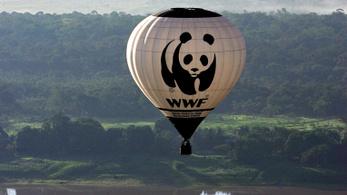 A WWF megvédi a pandákat, de megkínozzák a helyieket?