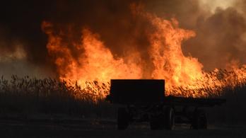 Tűzgyújtási tilalom van az országban