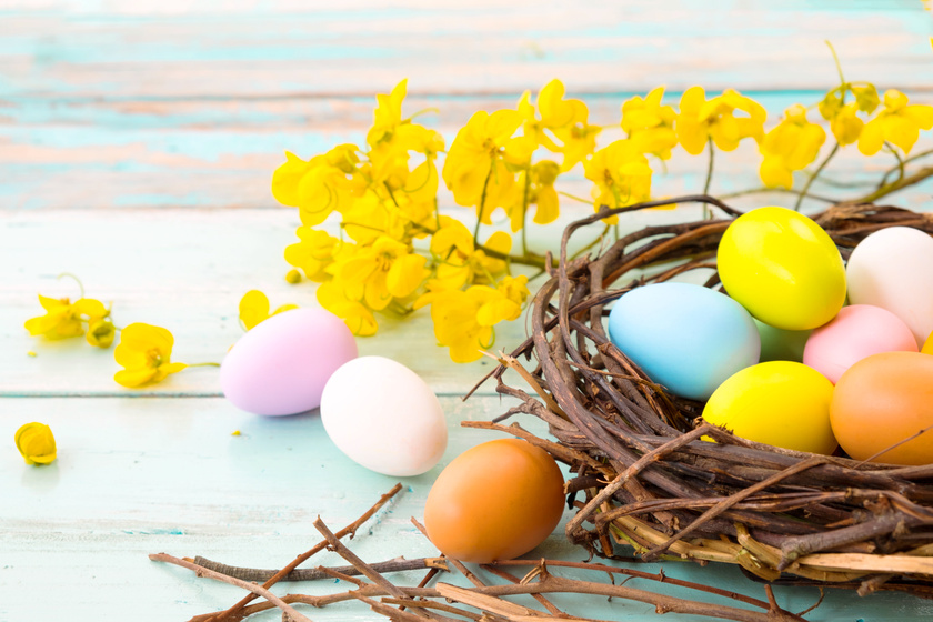 Egy egyszerű, ágakból font fészek mellett kihangsúlyozza a színes tojásokat egy élénk színű virág.