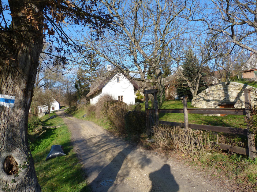 A Nivegy-völgy központjában fekszik a 474 lakosú Szentantalfa, melyen az Országos Kéktúra útvonala is végighalad. A hangulatos település kis házai között élmény sétálni.