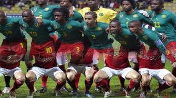Jós: Kamerunnál elkelne egy új edző