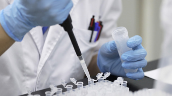 Őskutatás címén akarják megszerezni a DNS-ünket