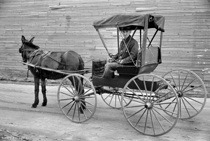 Lovaskocsi 1936-ban