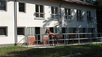 A KDNP állami ingatlanokat adna a fóti Lovasterápiás Központnak