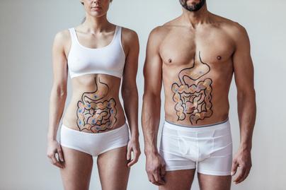 mikrobiom-cover