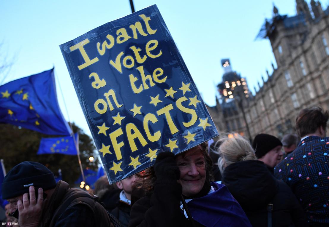 Brexit ellenes tüntető a londoni Parlament épülete előtt 2019. március 14-én
