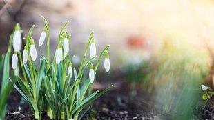Helló tavasz, már nagyon vártunk!