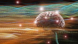 Az emberek is érzékelik a Föld mágneses mezejét?