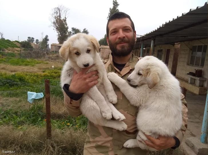 Kurdscampaign